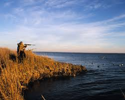 Shooting Tips for Duck Hunters: Part 1