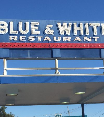 Top Duck Dives in The South: The Blue and White