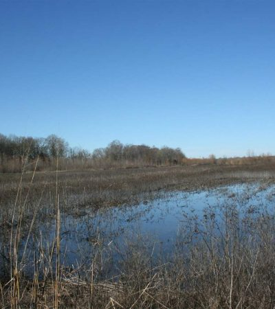 Prime Duck Hunting Land For Sale in Humphreys County