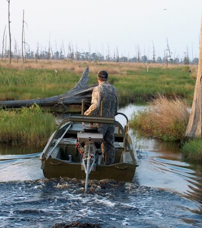 Great Duck Hunting Story