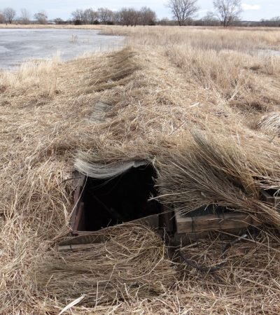 How Do I Conceal a Pit Blind When Duck and Goose Hunting?